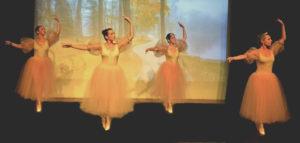 Espaço Ballet Carmem - Ballet Adulto - Básico