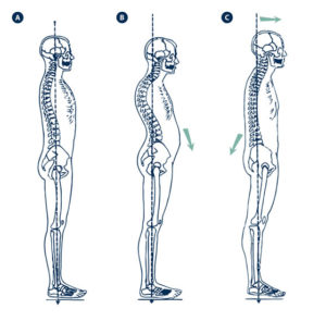 la-postura-01