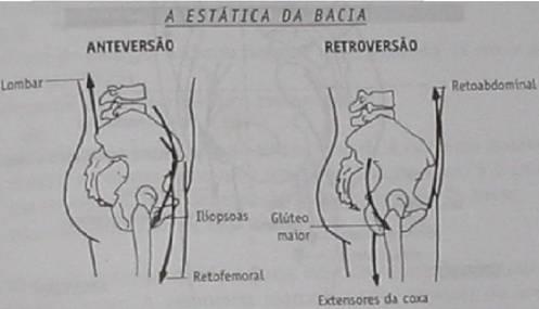 Espaço Ballet Carmem_Desequilíbrio pélvico